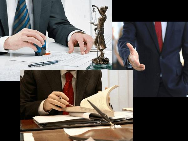 biznes_urist_tlt